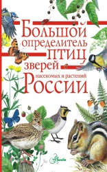 bolshoi-opredelitel-ptic